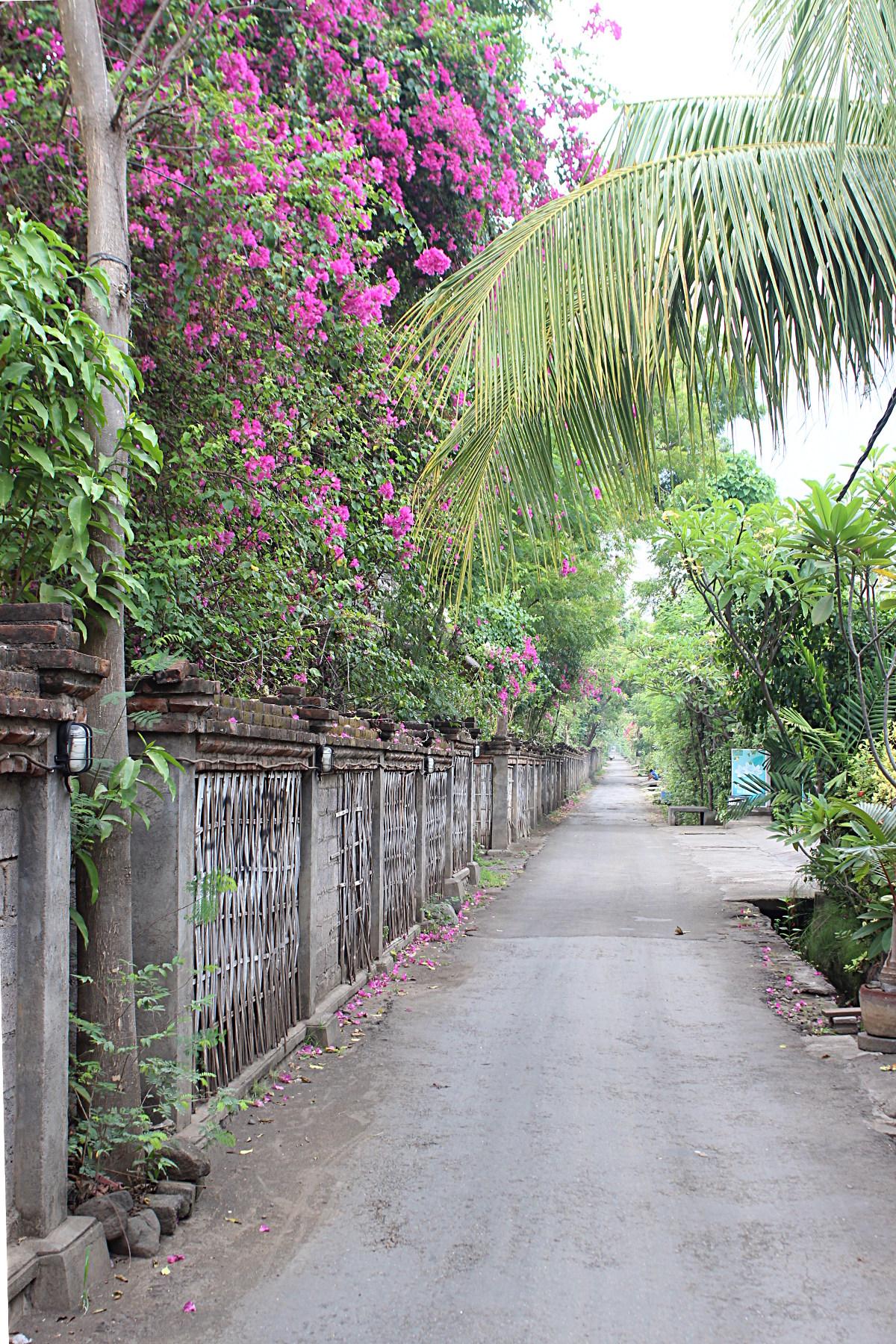 Street in Pemuteran