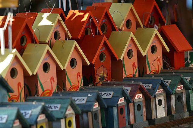 Des maisons pour oiseaux
